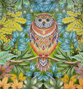 Coloring of Johanna Basford's Secret Garden - Owl by Betty Hung