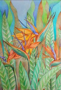 Bird of Paradise by Polina Bright - colored by Betty Hung