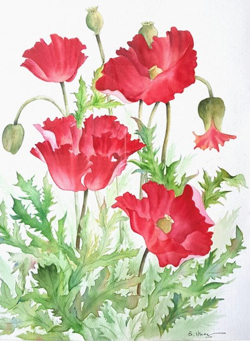 Remembrance Day – watercolor poppies greeting card