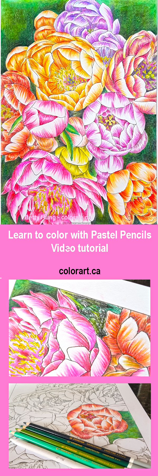 Learn how to color with Pastel Pencils