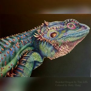 Bearded Dragon by Tim Jeffs Colored by Betty Hung