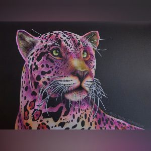 Cougar from Intricate Ink - Animals in detail by Time Jeffs, colored by Betty Hung