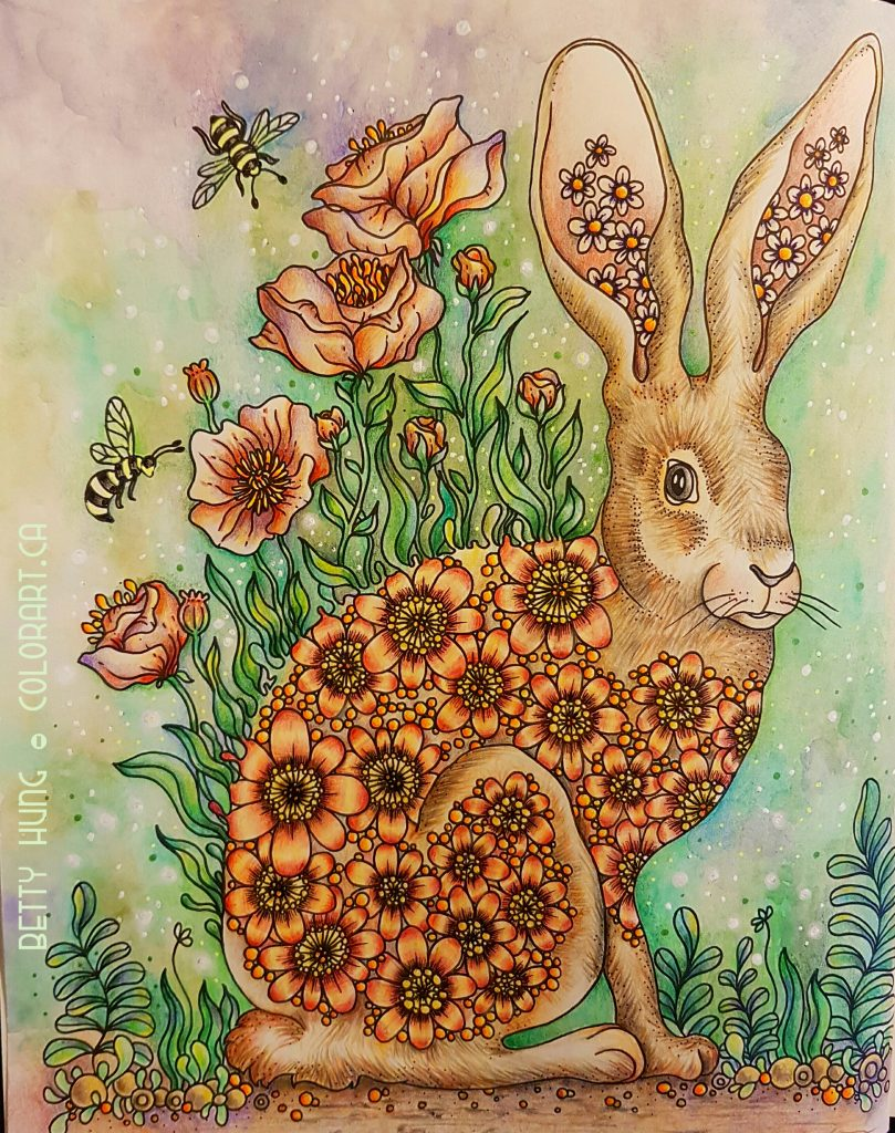 The Hare - Daydreams by Hanna Karlzon colored by Betty Hung