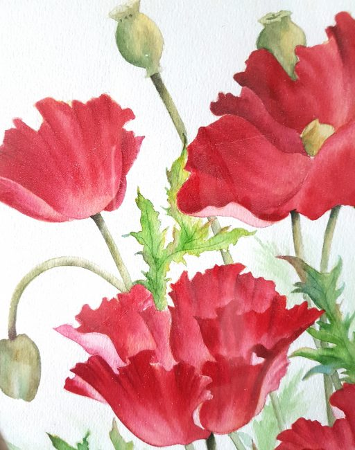 Watercolor poppies by Betty Hung - close up #2