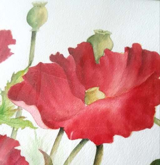 Watercolor Poppies by Betty Hung - close up #1