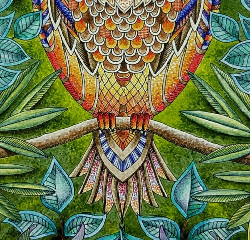 Close of Owl to show pointillism