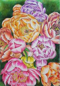Coloring of Peonies using Stabilo Pastel Pencils by Betty Hung