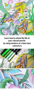 Visit colorart.ca to learn how to use Tombow dual brush pens as a base layer for colored pencils