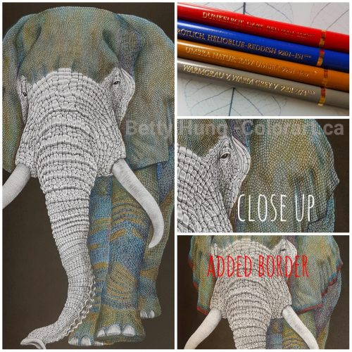 Picture of colors used to color the elephant in Tom Jeffs' Intricate Ink - animals in detail