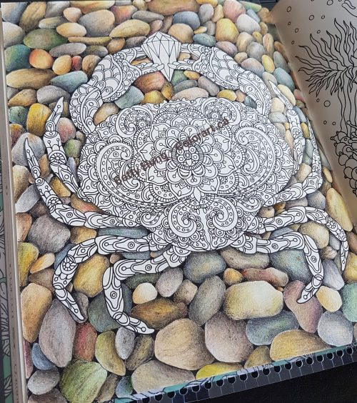 rock background using colored pencils