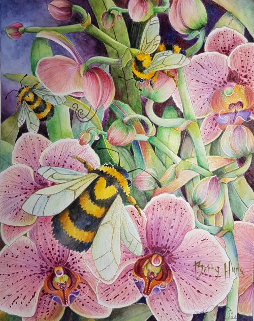 Orchid Bumbles from Insectimaginery by Ruby Charm Colors - colored by Betty Hung, colorart.ca