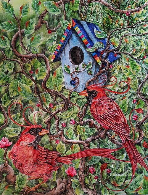 Birdhouse by Susan Carlson of Rubycharmcolors, colored by Betty Hung - colorart.ca