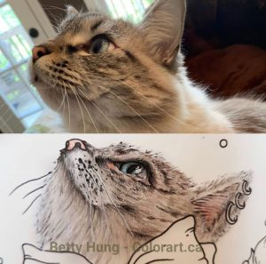 Klaus in Hanna Karlzon coloring page, colored by Betty Hung - colorart.ca
