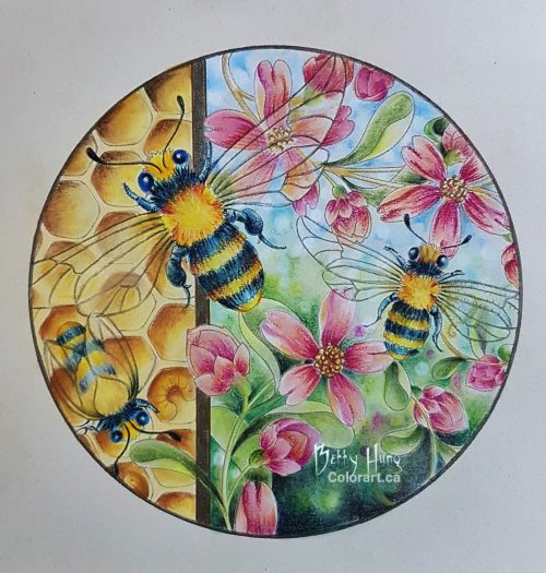 Bumble bees by Susan Carlson of Rubycharmcolors, colored by Betty Hung - colorart.ca